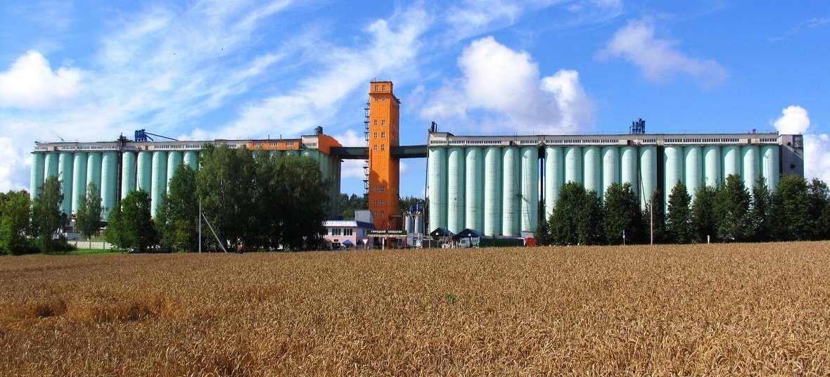 Элеватор ростовская область цена конвейер дск