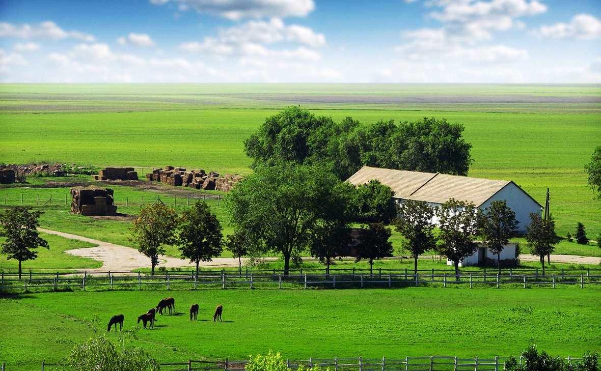 что картинка крестьянское фермерское хозяйство нее